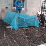 photo of planting bed
