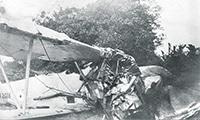 Harold's crashed plane