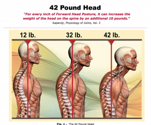 Diagram of posture and head position - Body Mind Coaching: Posture