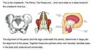 http://corewalking.com/pelvis-psoas-masseter-muscle/