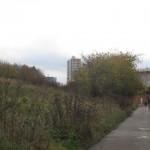 View to David Murray John tower