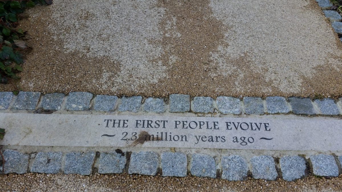 The first people evolve