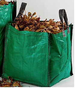 Grow Bag day