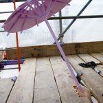 Blondinis umbrella
