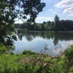 Lake at The Lawn 2