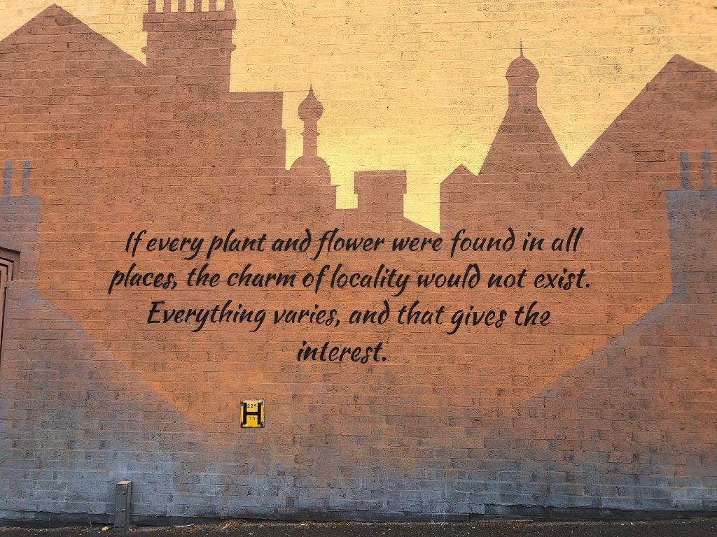 Richard jefferies quote - My Town - My World'  mural in Swindon