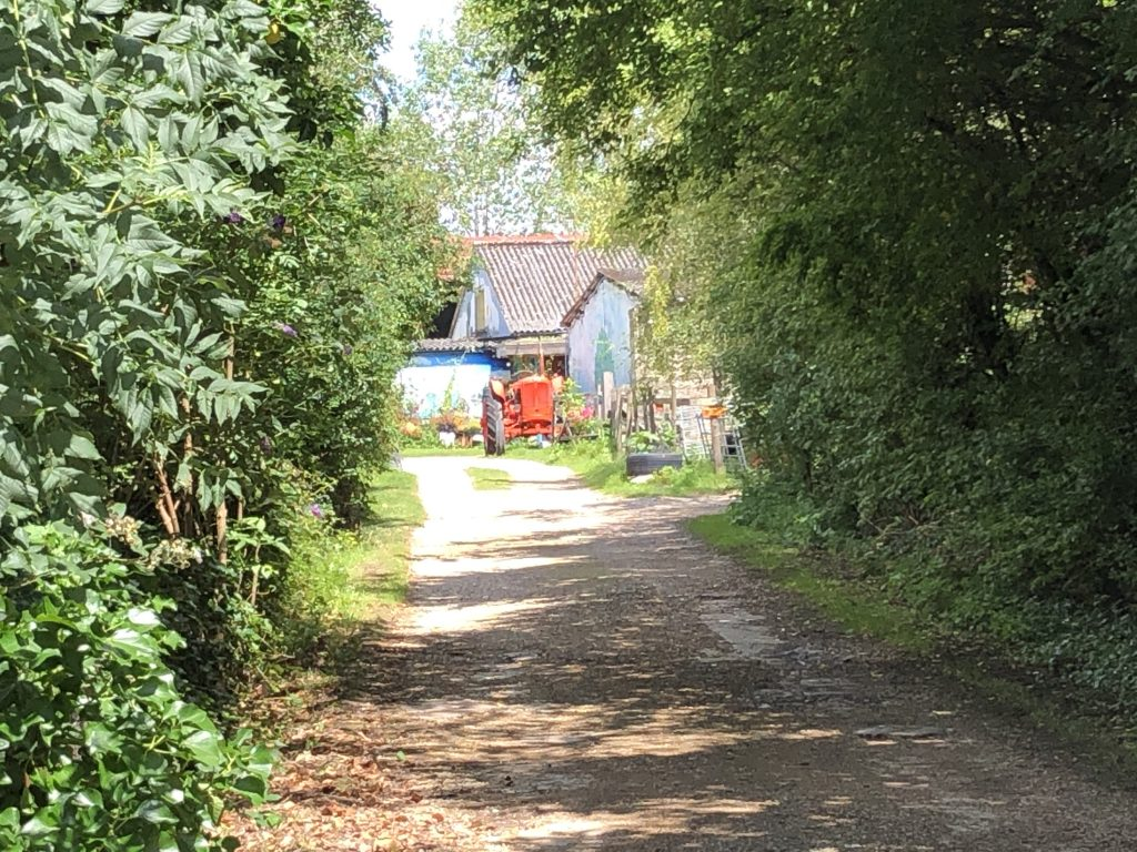 Looking down lane to lower shaw farm