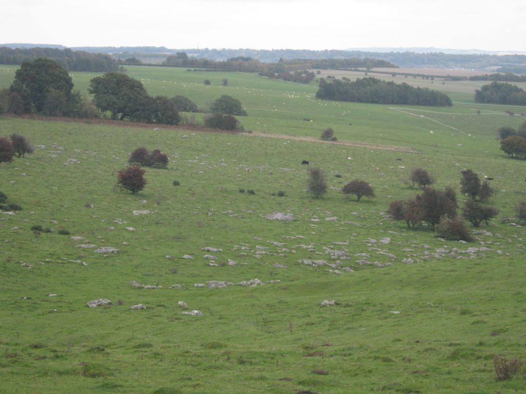 Wiltshire's Sarsen Stones - fyfield down