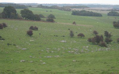 Wiltshire's Sarsen Stones
