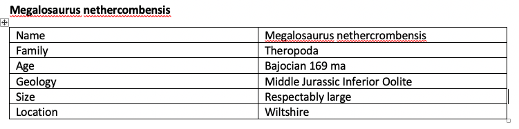 Megalosaurus nethercombensis