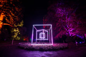 Christmas Light Spectacle for Town Gardens - cube by Luminism Light Art Pioneers'