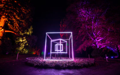 Christmas Light Spectacle for Town Gardens