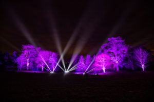 Son et lumiere -Christmas Light Spectacle for Town Gardens -